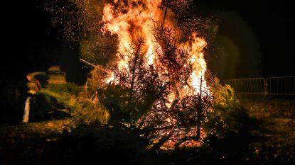 """Kwb gooit kerstbomen op de brandstapel: """"We delen zorg om milieu maar sociale cohesie is ook belangrijk"""""""