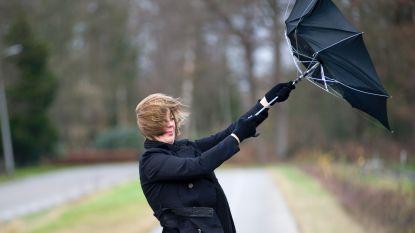 Code geel tot morgenochtend: lokaal mogelijk windstoten tot 100 km/u