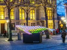 Rode eekhoorn, ijsbeer, walvis: Kunst van Delftse Tim (34) te zien in Utrecht en Den Haag
