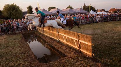 107e Feest van het Paard voor groot en klein in Krombeke
