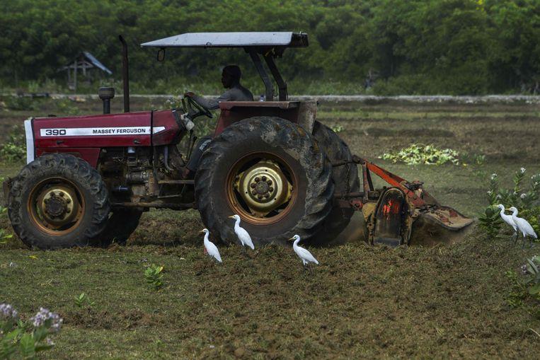 Kinderen zullen mee op een tractor kunnen rijden.