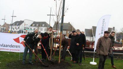 300 herdenkingsbomen vormen samen frontlijn