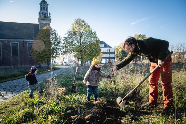 Boompjes planten in Meulestee-bos, in februari willen ze er elke dag een.