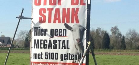 Onrust in Zaltbommel: straks megastal náást opgekochte gigageitenstal?