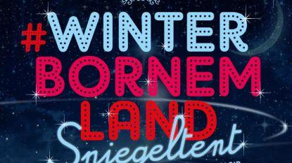 'WinterBornemLand' in grote spiegeltent op Cardijnplein