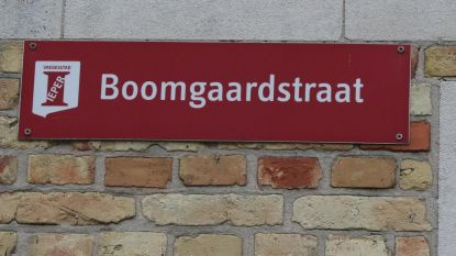 Werken in de Burchtstraat, de Boomgaardstraat en de Dehaernestraat