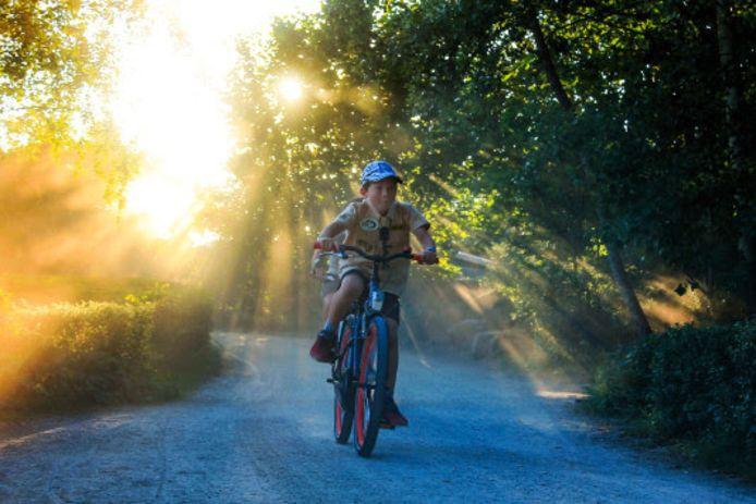 Gio Cruz heeft op ludieke wijze geld op gehaald voor cheeta's. De 9-jongen ging in een uur zo veel mogelijk rondjes fietsen over de wandelpaden in Safaripark Beekse Bergen.