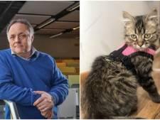 Une quarantaine en labo sous supervision de virologues: la solution de Marc Van Ranst pour le chat péruvien
