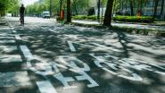Parkeerstroken Reyerslaan maken plaats voor fietspad