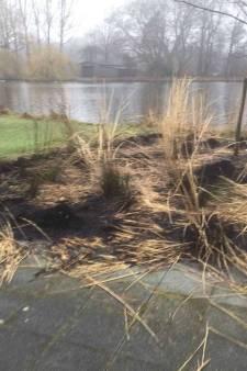 Vandalen doden bijen en verbranden planten in Haags Zuiderpark