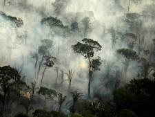 Twee inheemse leiders komen om bij schietpartij in Brazilië