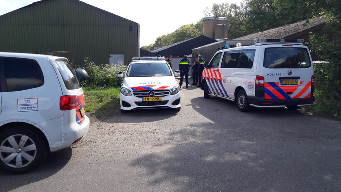 Politiemensen bewaakten dinsdag nog de varkenshouderij aan de Brede Heide in Boxtel.