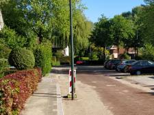 Verkeer Oisterwijkse woonwijk moet wel héél vreemd obstakel ontwijken