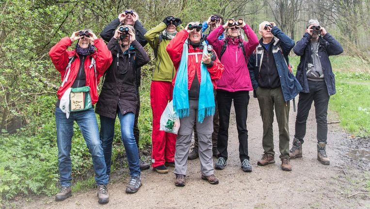 Deelnemers aan de excursie voor beginners in het Amsterdamse Bos. 'Bij die dikke zwarte boom zit ie!' Beeld Dingena Mol