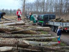 'Er ligt genoeg brandhout in De Elzen'