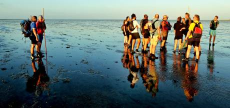 Wadlopen in trek: niets anders zien dan het terugtrekkende water