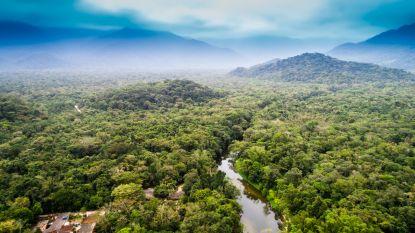 80% van Moeder Aarde aangetast door mens: in 16 jaar ging 3,3 miljoen vierkante kilometer (!) wildernis verloren
