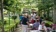 Opentuinendag lokt 400 tuinliefhebbers