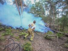 Grote bosbrand in gebied bij Deurne, brandweer rukt massaal uit