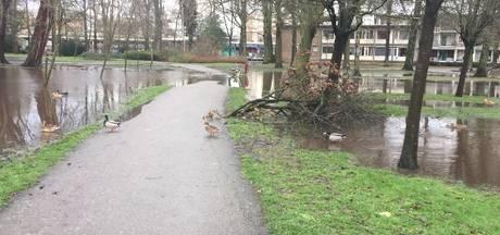 Weizigtpark onder water door hevige neerslag