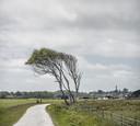 Het waddeneiland Schiermonnikoog