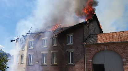 VIDEO. 220 schoolkinderen geëvacueerd nadat hevige brand uitbreekt in Paenhuishoeve