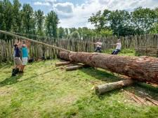 Vlaardingse boomstamkano belangrijk voor de wetenschap