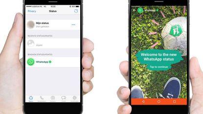 Whatsapp viert 8ste verjaardag met Snapchatkloon 'Whatsapp Status'
