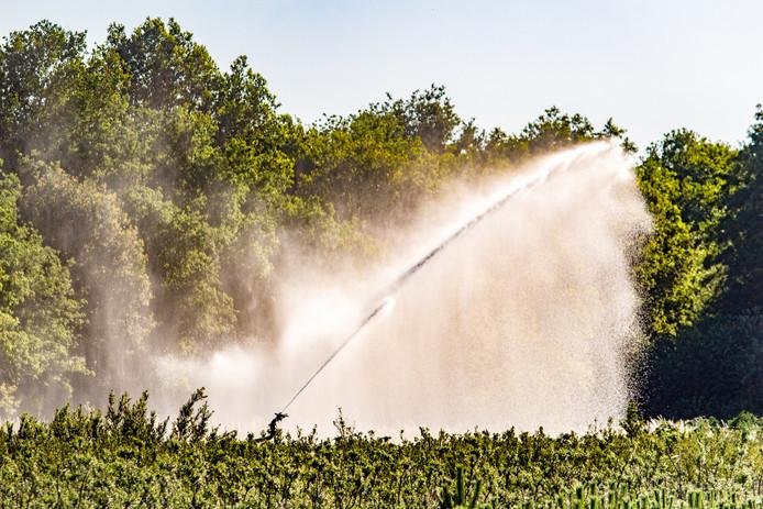 Vooral in regio's waar een beregeningsverbod met oppervlaktewater is ingesteld, wordt steeds intensiever beroep gedaan op het grondwater.
