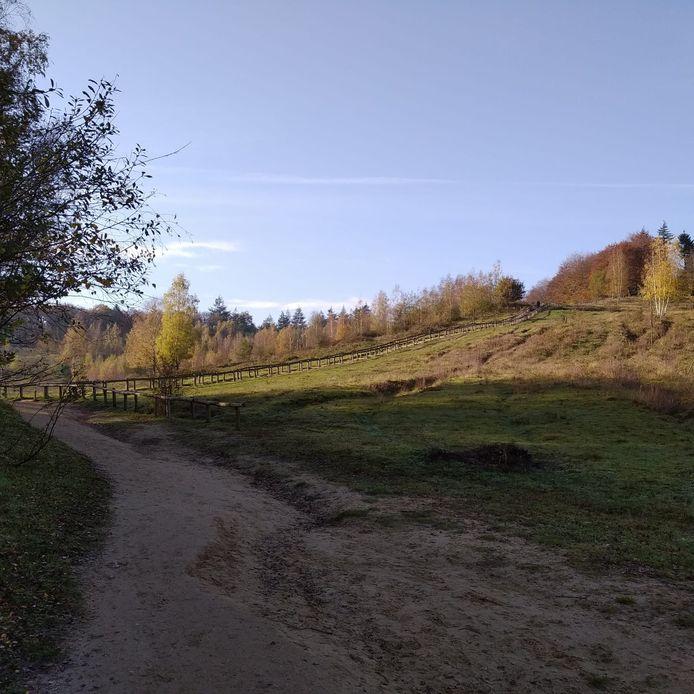 Een warme herfstdag in Kwintelooijen.