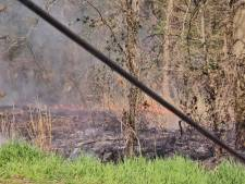 Klein bosbrandje in Steenbergen