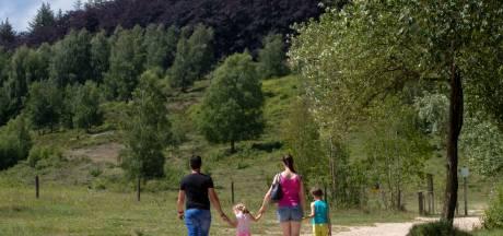 Rhenen zet nog meer in op toerisme als inkomstenbron