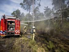Tbs en celstraf voor brandstichtingen in natuurgebieden rond Denekamp