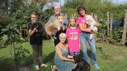 San Anton helpt al vijf jaar Spaanse honden aan nieuwe thuis