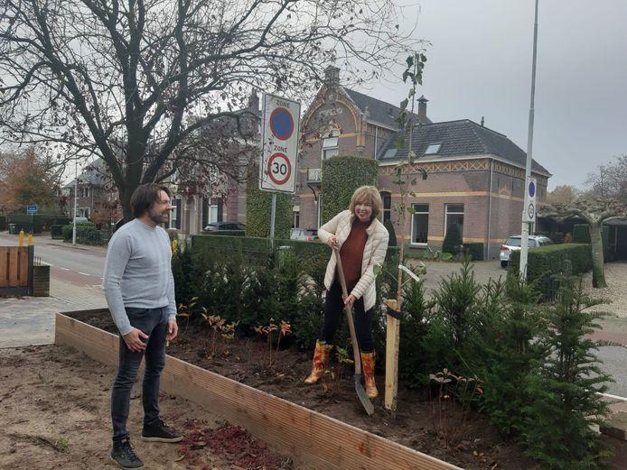 Wethouder Ingrid Lambregts plant een boom aan de Ds. van Dijkweg in Doetinchem.