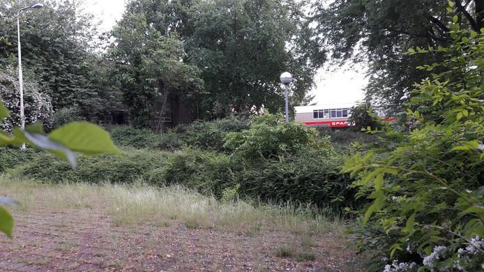 Het verlaten terrein van het voormalige rouwcentrum aan de Geertjesweg in Wageningen is nu hier en daar wat overwoekerd, Er komt een Jan Linders-supermarkt
