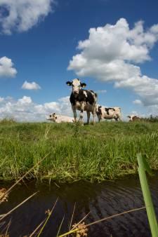 Hoogheemraadschap Krimpenerwaard test waterveiligheid