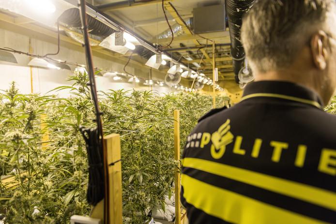 Politie in een illegale hennepkwekerij