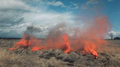 IN BEELD: Waar rook is, is vuur? Niet bij deze natuurbrandoefening op militair domein