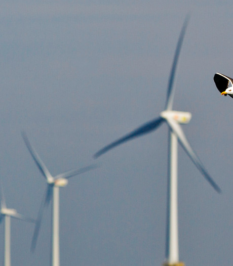 Shell-aandeelhouders wijzen duurzaamheidsresolutie af