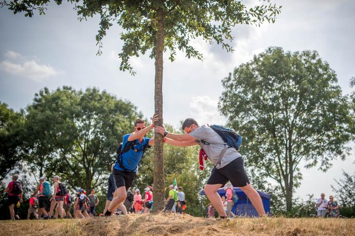 Een wedstrijdje boomdrukken, of zijn deze wandelaars de benen aan het stretchen?