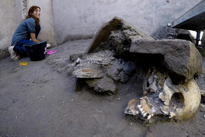De resten van vijf personen, waarschijnlijk twee vrouwen en drie kinderen, werden recentelijk gevonden bij opgravingen in Pompeii