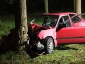 Twee gewonden bij botsing tegen boom in Zegge