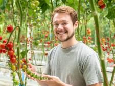 Daniël (26) ontwikkelt nieuwe tomatenrassen: 'De planten voelen als mijn kindjes'