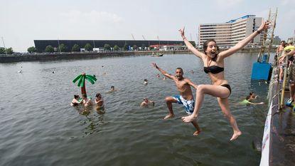 Elke zomerdag duiken in dokken?