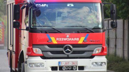 Brandweer Vilvoorde houdt opendeurdag