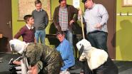 't Merchtems Volkstheater brengt 'Komkommer en kwel' op de planken (en komt ook naar Peizegem)