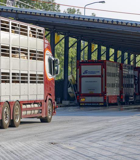 Stankoverlast bij slachterij Vion en geuronderzoek: 7,5 ton extra nodig
