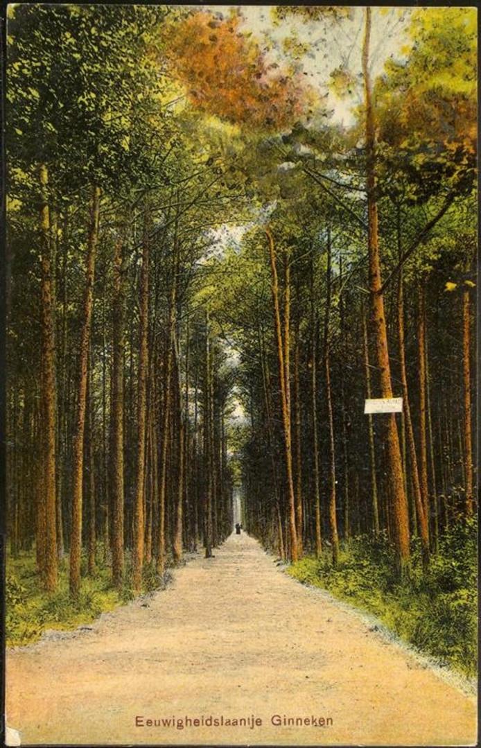 Het Eeuwige laantje in 1908.