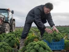 Drie op vijf boeren bezorgd over toekomst bedrijf